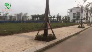 Bán 3 lô đất nền dự án tại Bách Việt Lake Garden, Thành phố Bắc Giang 0946313216