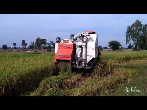 รถเกี่ยวข้าว คูโบต้า เกี่ยวข้าวนาปรัง Harvester KUBOTA