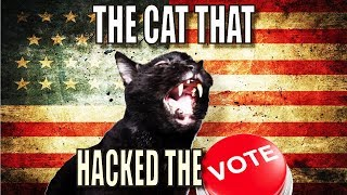 Talking Kitty Cat 57  The Cat That Hacked The Votes