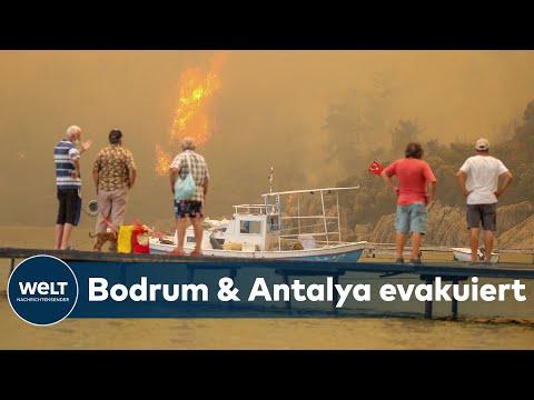Dramatische WALDBRÄNDE wüten weiter: Feuer in Türkei, Italien und Griechenland