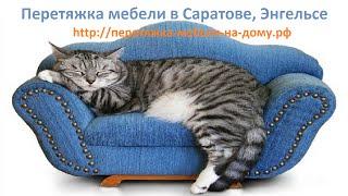 Перетяжка мебели в Саратове / Диваны/ Собаки или кошки?/Котэ Саратовский/