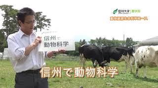 農学部 農学生命科学科 動物資源生命科学コース