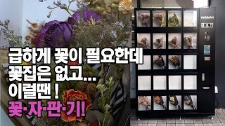 급하게 꽃이 필요할땐!? 게O린 말고! 꽃 자판기!