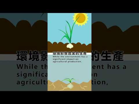 農業與環境