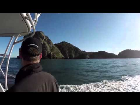 Anglers Lodge Coromandel New Zealand