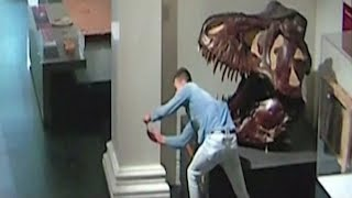 Student charged after allegedly having a 'night at the museum' in Australia
