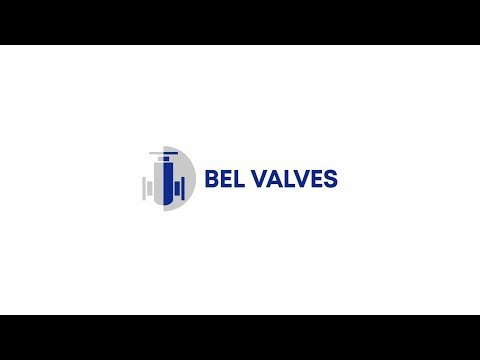 BEL Valves Company Overview