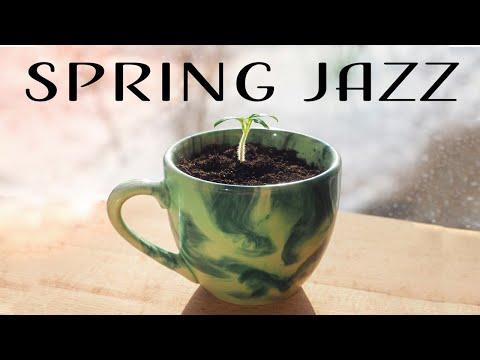 Relaxing Spring JAZZ - Beautiful Insrumental Piano JAZZ Music & Good Mood