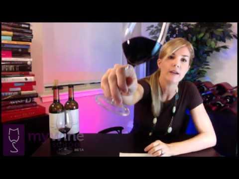 """WineCAST #2: Crowd Pleasers - Decero Malbec 2009 """"Remolinos Vineyard"""""""