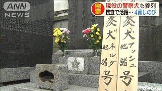 数々の功績残し・・・捜査で活躍の警察犬4頭を慰霊(19/07/11)