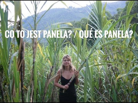 CO TO JEST PANELA? / QUÉ ES PANELA?
