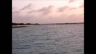 anguilla excursion 2