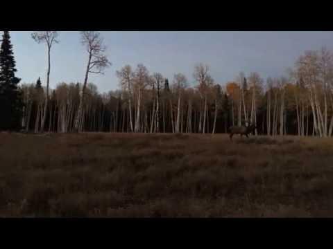 2016 Spike Elk Hunt