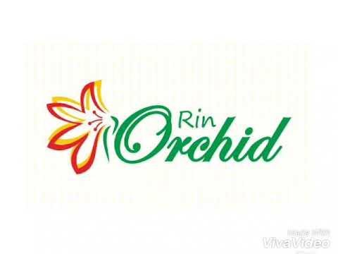 rin orchid pwmp smk pp banjabaru