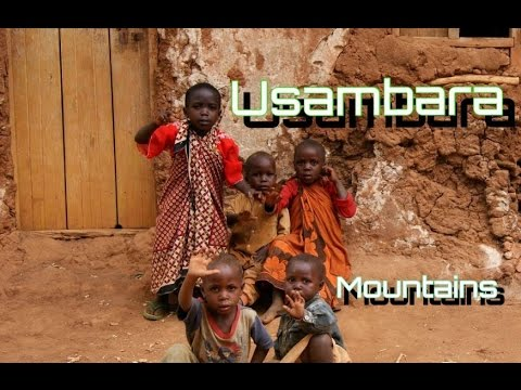 Usambara Mountains including Lushoto | Mtae | Amani