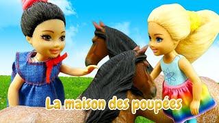 Barbie et Chelsea  au zoo. Vidéo avec les poupées pour enfants.