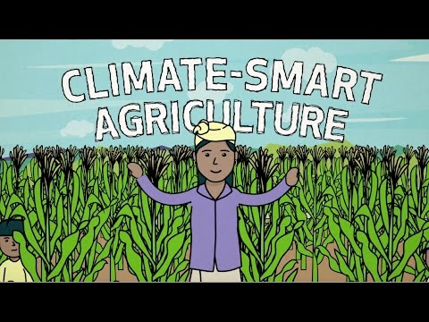 Climate-Smart Agriculture in Action