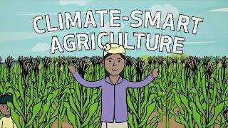 Klima-Smart-Landwirtschaft in Aktion