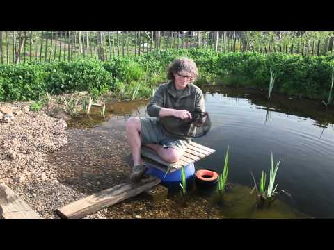 DIY floating skimmer for a natural pool - organicpools.co.uk