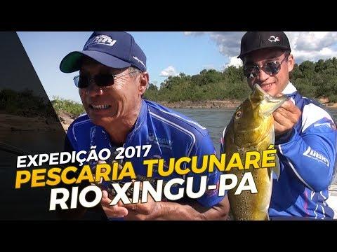 PESCARIA NO RIO XINGU - PARÁ [EXPEDIÇÃO 2017]