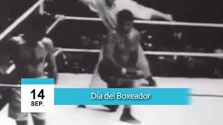 14 de Septiembre - Día del Boxeador