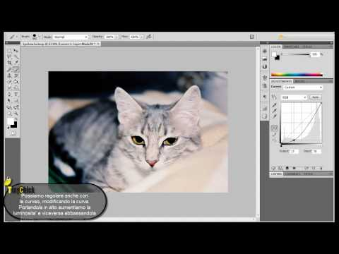 11) Come rendere Nitide le Foto - Photoshop CS5 - Tutorial Italiano from YouTube · Duration:  8 minutes 32 seconds