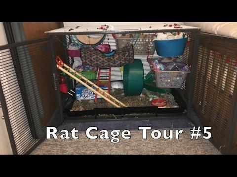 Rat Cage Tour #5