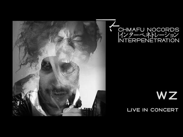 WZ @ Interpenetration 1.9.1