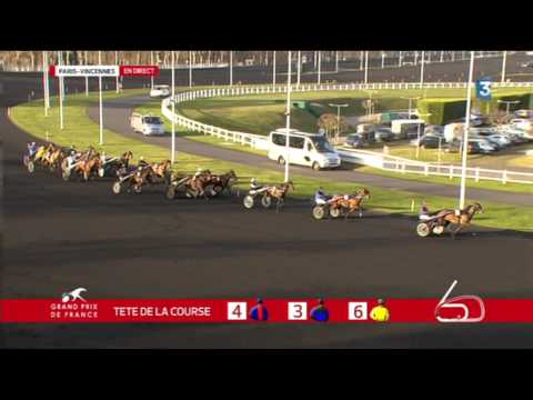 Grand Prix de France 2015 - Timoko (Bjorn GOOP)