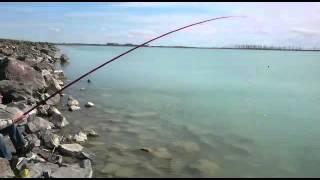 Рыбалка озеро Балхаш п. Улькен апрель 2016 г.