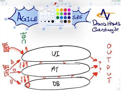 Agile Team Structure