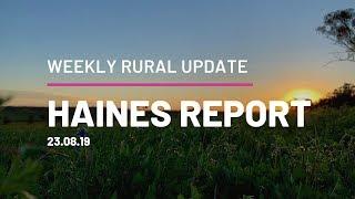 Haines Report 23.08.19 QPL Rural Property & Livestock
