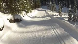 Silverstar cross country skiing -