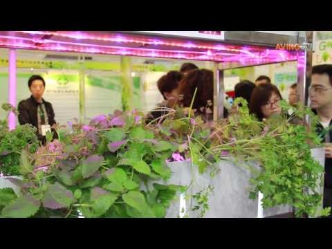 [2015MIECF] Easy Organic Farming Introduces its Easy Caring eGarden