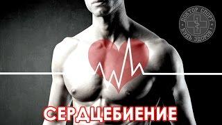 Доктор Спорт «Сердцебиение и Аритмии»