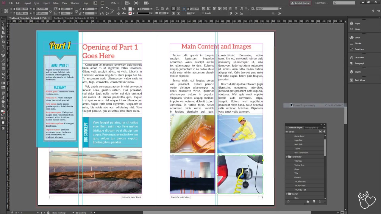 Science Textbook Template Custom Tutorial (InDesign) - YouTube