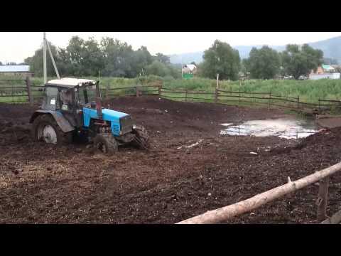 Трактор застрял в навозе - YouTube