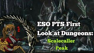 Bu Scalecaller Peak Dungeon Vet Run | Garroshboosting