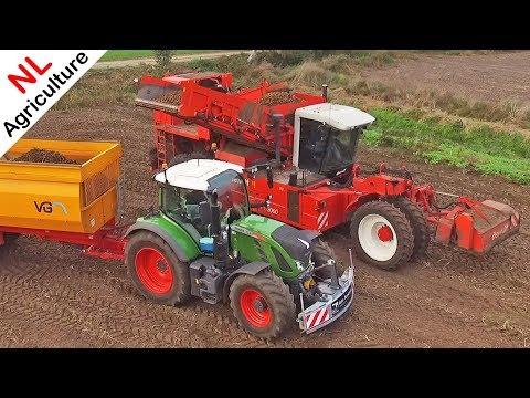 Harvesting Potatoes - Dewulf RS3060 + Fendt 724 Vario - Aardappels rooien - Hardeman - Lunteren.
