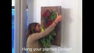 Diy - Lisi Makes Her Own Grovert Designer Living Wall Planter