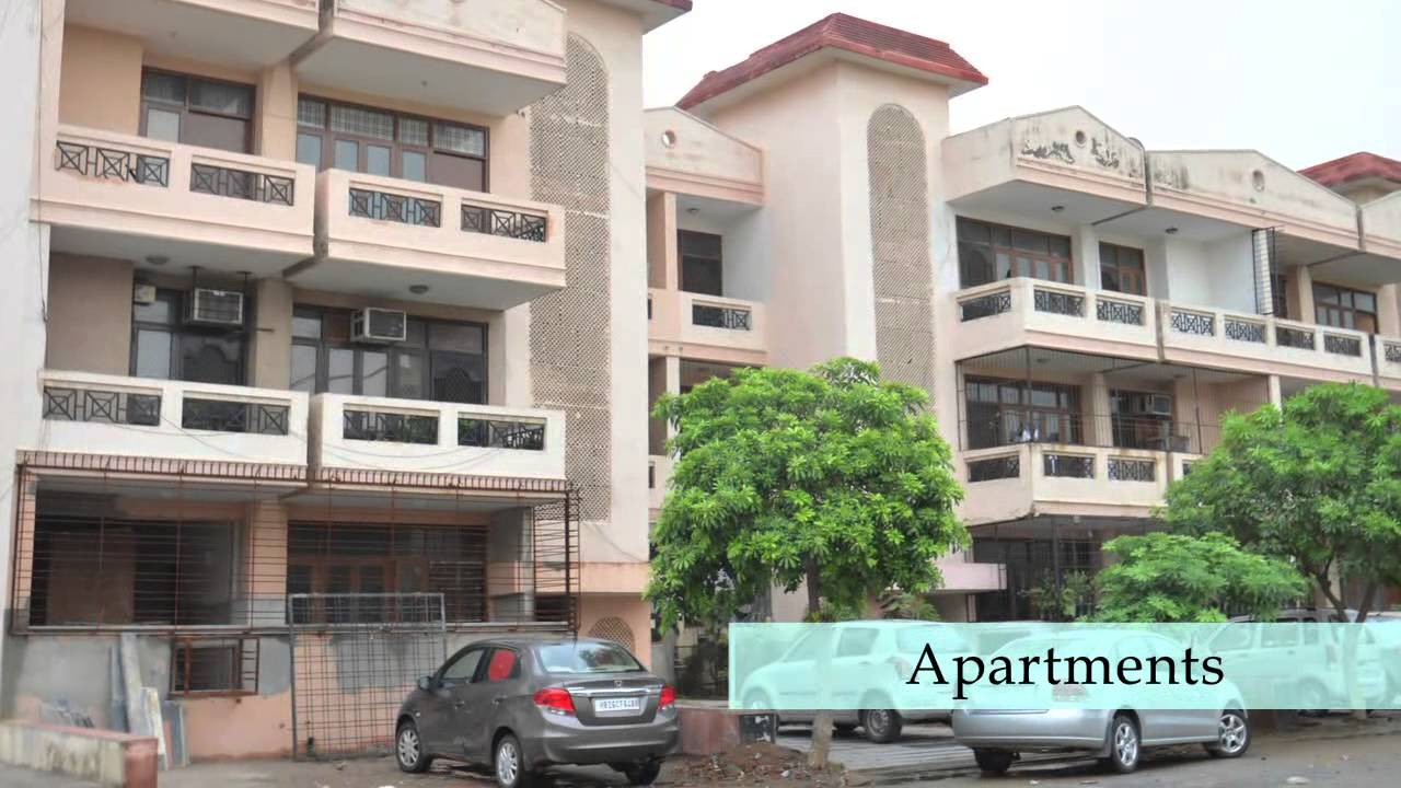 Property In Ardee City Gurgaon Flats In Ardee City Locality