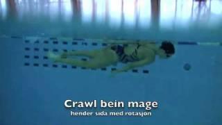 Crawl drill bein mage hender sida med rotasjon