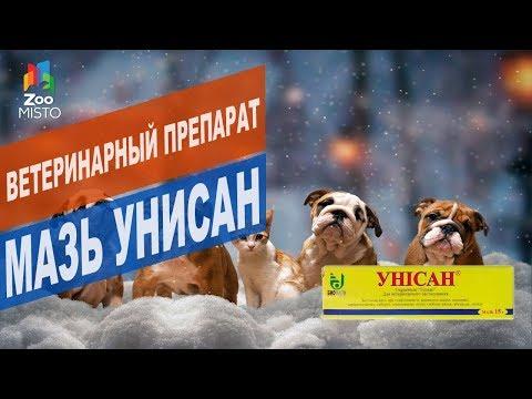 Ветеринарный препарат Мазь Унисан   Обзор Ветеринарного препарата Мазь Унисан