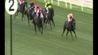 Black Caviar - 9 from 9 - wins Lightning Stakes-G1