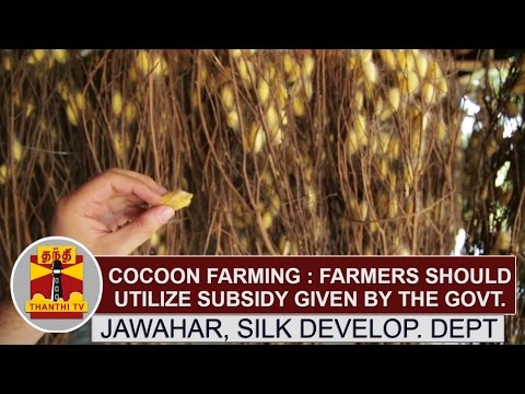 Cocoon farming: Farmers should utilize subsidy given by the Govt. - Jawahar, Sik Development Dept