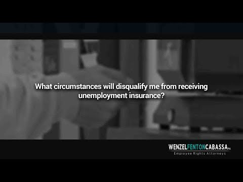 What circumstances will disqualify me from receiving unemployment insurance?