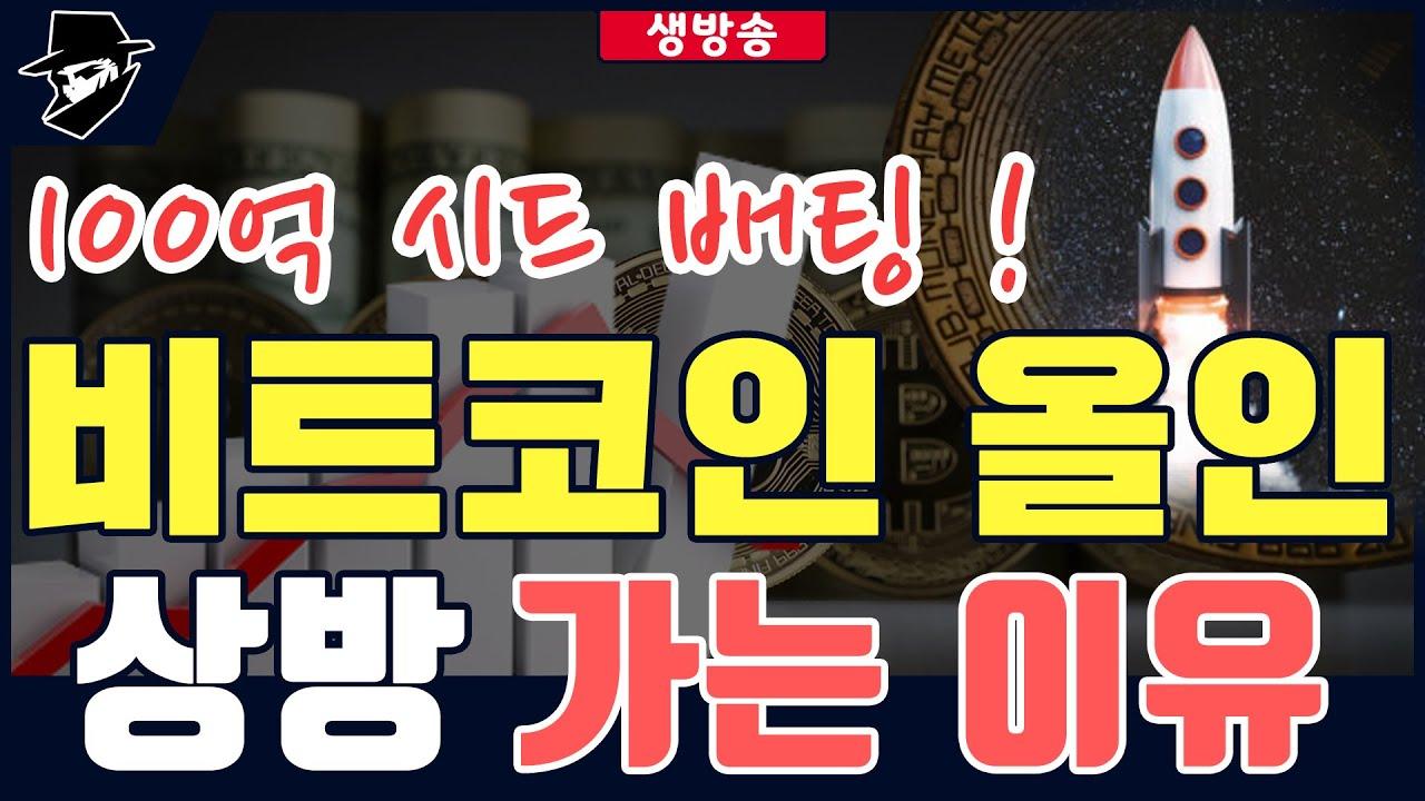 비트코인 올인  7년차 전업투자자  메타버스 업비트 빗썸 김치코인 김프 알트코인 펌핑