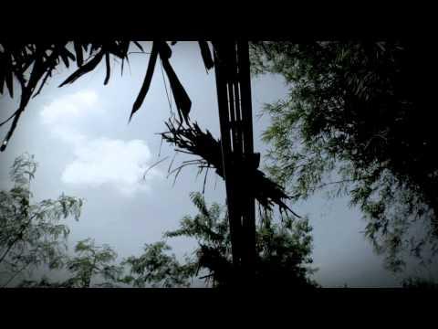 PUREZA The Story of Negros Sugar (Full Trailer)