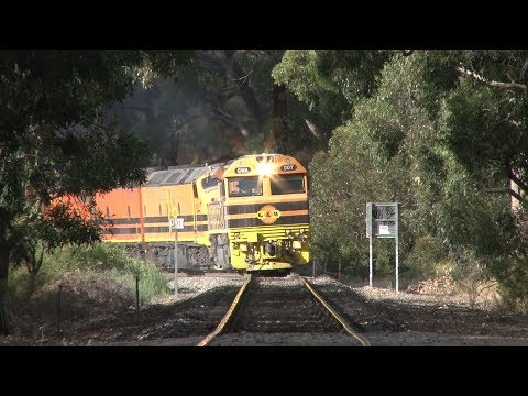 Aurizon locomotives on SCT Logistics Freight 1PM9 in the
