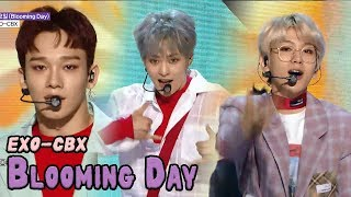 Download Video [HOT] EXO-CBX - Blooming Day, 엑소-첸백시 - 花요일 Show Music core 20180421 MP3 3GP MP4